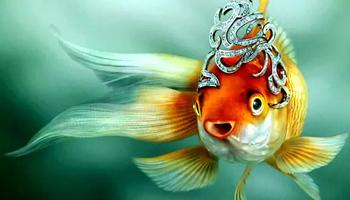 Психотерапевтическая сказка «Золотая рыбка»